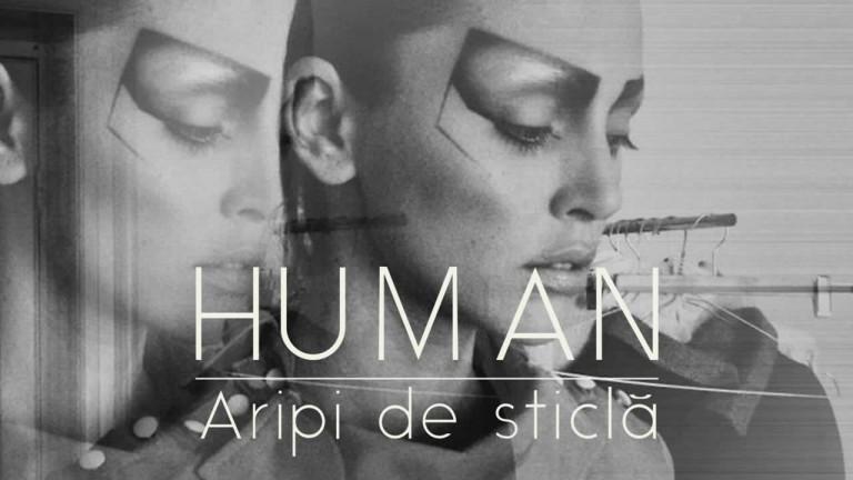 Human - #aripidesticla